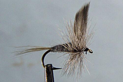 1 x Mouche Sèche Subimago Bleue  H14//16//18 fliegen mosca fly dry fishing