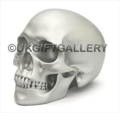 SILVER DESIGN CLINIC SKULL Statue Sculpture Ornament Model Of Human Head NEW BN