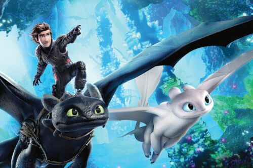 How To Train Your Dragon poster home decor photo print 16x24 24x36 20x30
