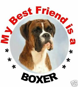 2-Boxer-Car-Stickers-MBF-Designed-By-Starprint