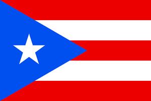 2017 Team Puerto Rico World Baseball Classic 40 Card Lot 18 Wbc