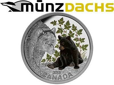 20 $ Dollar Baby Animals Schwarzbär Black Bear  Kanada 2015 1 oz Silber PP