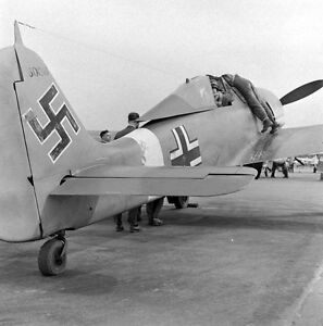 WWII Photo German Luftwaffe Fw190 in Flight  WW2 World War Two Germany