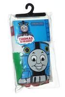 Thomas The Train Tank & Friends Underwear 4t 3 Pair By Hanes