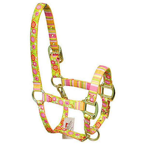 Spring w/Stripes Bouquet w/Stripes Spring Accent Fashion Horse Halter ebab75