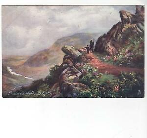 Tucks-Oilette-Precipice-Walk-Dolgelly-No-6233-Picturesque-Nth-Wales-FW-Hayes