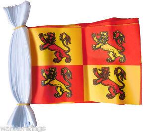 30 flag bunting Owain Glyndwr 9 metre long
