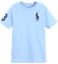 Polo-Ralph-Lauren-Enfants-Garcons-Filles-a-encolure-ras-du-cou-manches-courtes-T-Shirt-top-2-To miniature 15