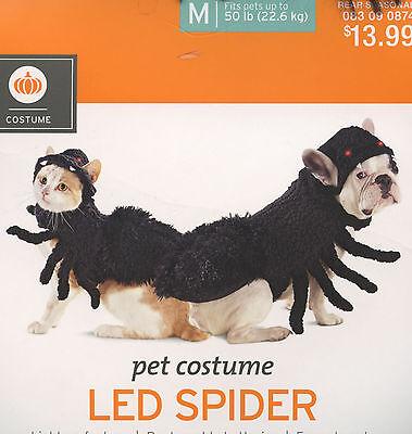 LED Spider Dog Halloween Dress-up Costume Photo Prop XS S M L XL