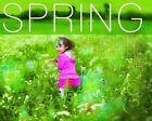 Spring by Harriet Brundle (Hardback, 2015)