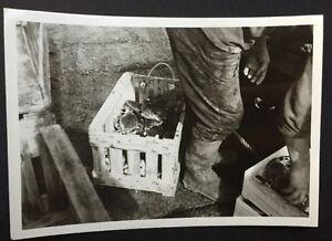 Ref15-Ancienne-Photos-Vintage-Env-9-12-5-Cm-Voir-Photos-Pour-Plus-Details
