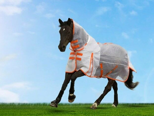5ft3 Masta Rip Stop Breathable Combo Fly Rug - 1000D, Lightweight. Only Tried On