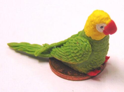 Escala 1:12 Grande Verde//Amarillo Arcilla Polimérica Loro Pájaro Casa De Muñecas Accesorio P17