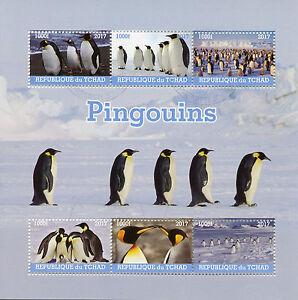 Chad-2017-CTO-PINGUINI-6v-M-S-Pinguino-birds-stamps