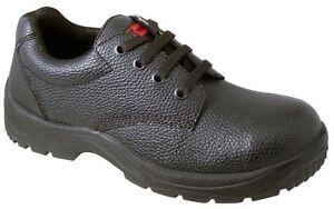 Cap Gibson Ligero trabajo de negros brit seguridad de Toe Zapato Tallas Blackrock Steel Zapatos BTFcy1qHT