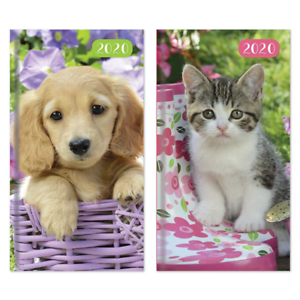 JUST-50p-DIARIES-KITTENS-AND-PUPPIES-X-18-VARNISHED-HARDBACK-3037