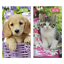 JUST-50p-DIARIES-KITTENS-AND-PUPPIES-X-18-VARNISHED-HARDBACK-3037 thumbnail 1