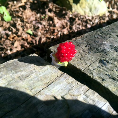 Life Sized Raspberry Geocache Geocaching Sneaky Container Raspberry on Tube