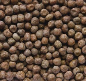 MAPLE PEAS PIGEON FOOD / PEAS: Johnston & Jeff Maple Peas 20kg (JJ325)