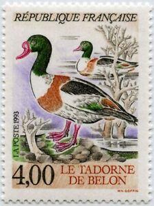 """TIMBRE FRANCE NEUF 1993 """"Le Tadorne De Belon"""" Y&T 2787"""