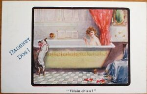Risque-1916-Postcard-039-Naughty-Dog-039-Watching-Woman-in-Bathtub