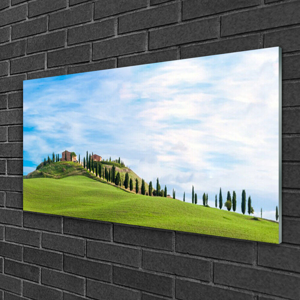 Acrylique Print Wall Art Image 100x50 Photo Meadow Arbres Paysage