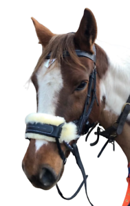 BROWN Anatomical Leather Show Bridle Comfort Padded with Grip Reins