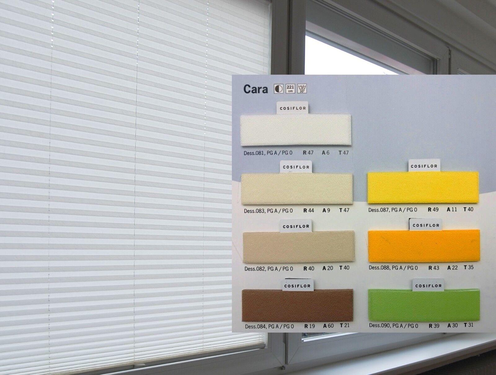 Cosiflor Cara Sichtschutz Plissee Faltstore Rollo Fenster Made in in in Germany | Zu einem erschwinglichen Preis  | Niedriger Preis und gute Qualität  | Modernes Design  66f640