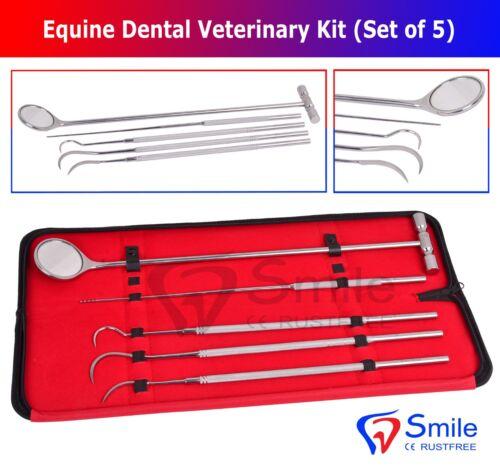 Sonrisa Inglaterra Equino Dental Espejo Sonda Explorador Veterinario Juego UK