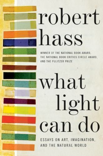 What Light Can Do Essays On Art Imagination And The Natural