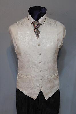 Aufstrebend W - 608 Mens/boys Ivory Flower Waistcoat / Suit / Party / Formal