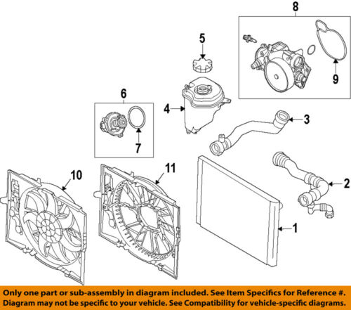 BMW OEM 07-13 X5-Radiator Cap 17117639021