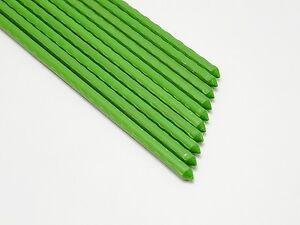 Neuf-10x-Piquet-pour-Plantes-Barre-de-Tension-de-Maille-Tomatenstab-Vert-1200mm
