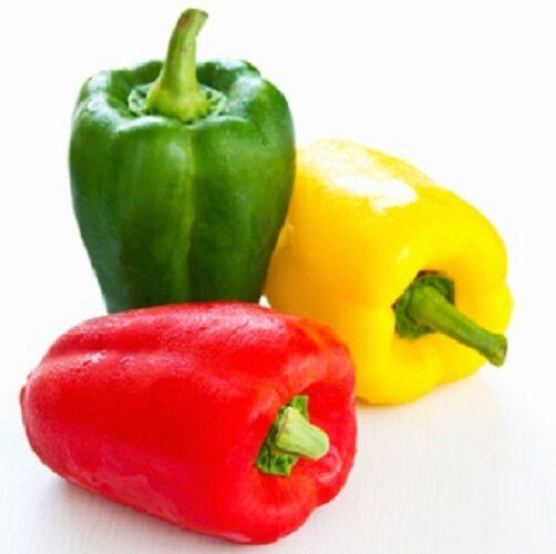 Sweet Pepper Andrea -20 seeds - Vegetables / Fruits