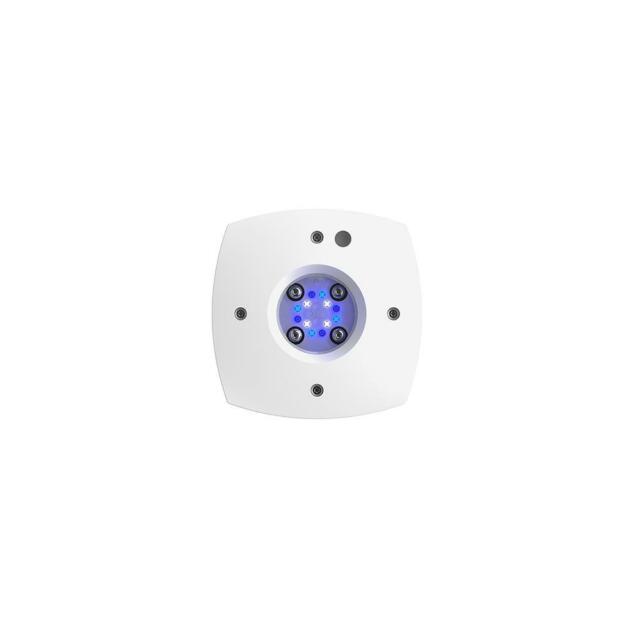 Aquaillumination Prime Sol Aquarium LED, White
