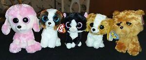 "6"" Ty Beanie Boos - Duke, Barley, Cookie & Princess Puppies & Pepper the Kitten"