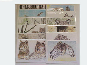 Wolf Cards Blank Cards w/ Envelope 5 x 7 SET of 12 Assorted NEW can be Framed