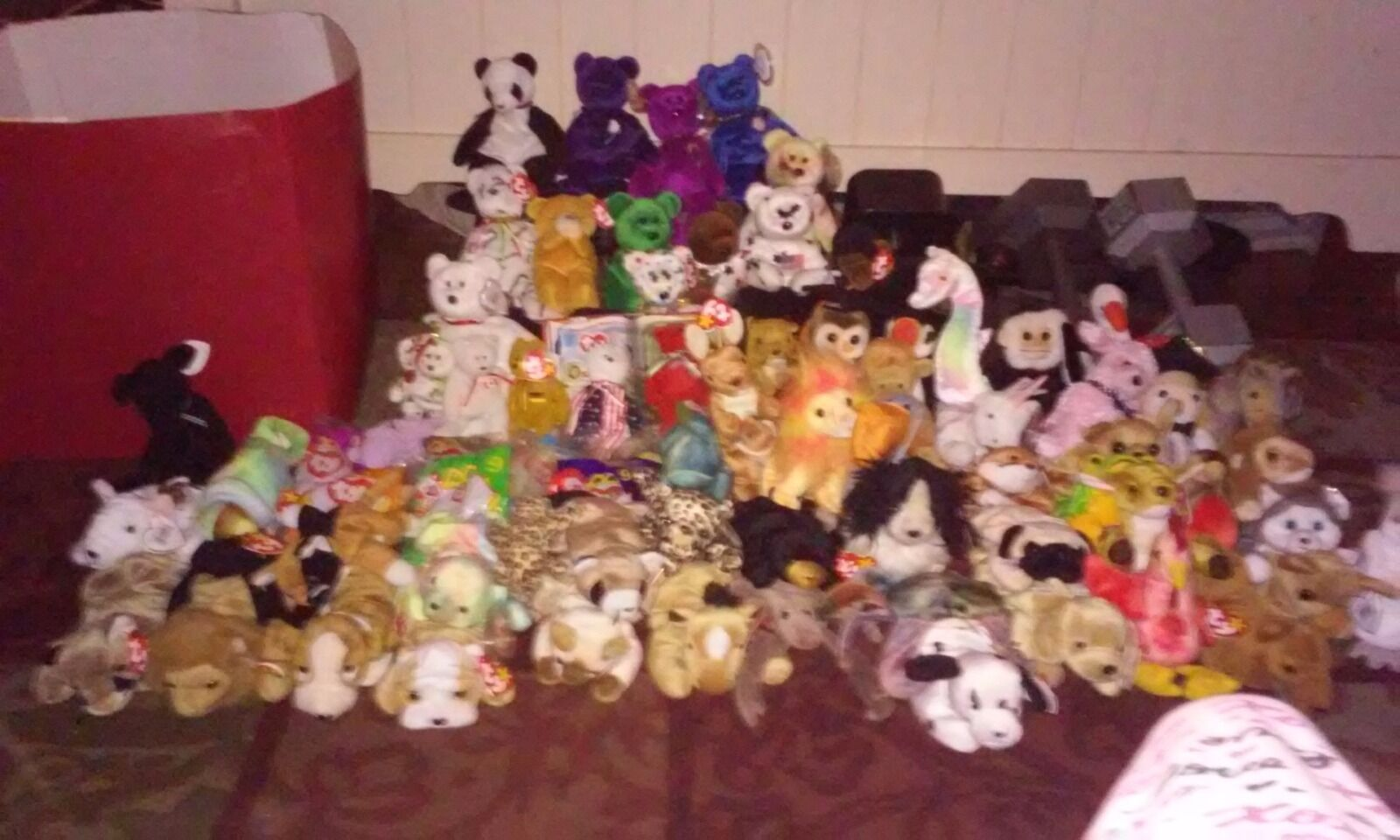 Beanie Babies in need of a new home ASAP.