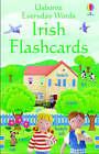 Everyday Words: Irish Flashcards by Felicity Brooks (Novelty book, 2005)