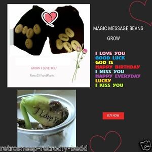 Magic Message Haricots Nouveaute Fun Cadeau Love You Good Luck