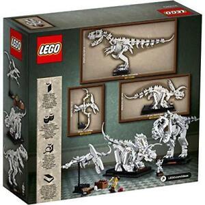21320-LEGO-IDEAS-FOSSILI-DI-DINOSAURO-PZ-910-ANNI-16-NUOVO-GARANZIA