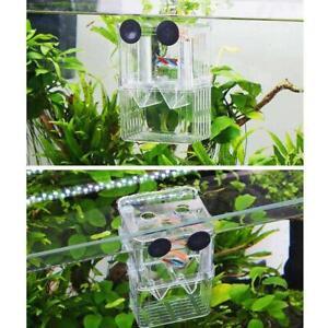 Aquarium-Fish-Breeding-Box-Hatchery-Shrimp-Fish-Tank-Useful-F0Z4-Isolation-U4P2