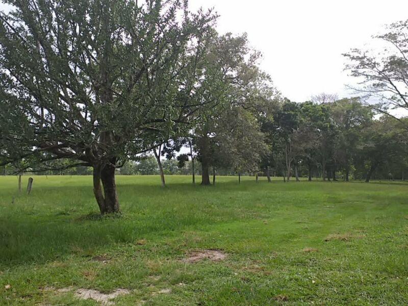 Terreno de 48 hectareas en Palenque  Chiapas a 5 min de Pakalna