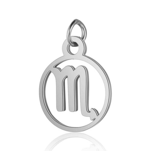 5 pcs Stainless Steel Zodiac Signs Charms 12 Constellations Pendants 11x16mm