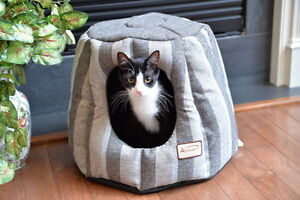 Armarkat-Striped-Hooded-Cave-Cat-Kitten-Hut-Bed-Striped-Pearl-and-Putty-C30CG
