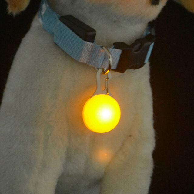 RLL 1pc Durable Pet Puppy LED Flashing Collar Safety Night Light Pendant Yellow