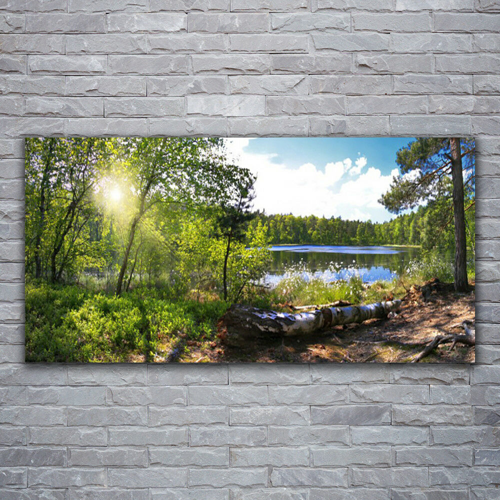 Canvas print Wall art on 120x60 Image Picture Forest Lake Nature