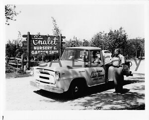 Image Is Loading 1958 International Harvester A100 Pickup Truck Factory Photo