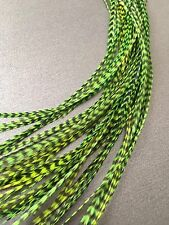 Lot 10 Neon Green Grizzly Feathers Hair Extensions saddle Long Striped GRN GRIZ
