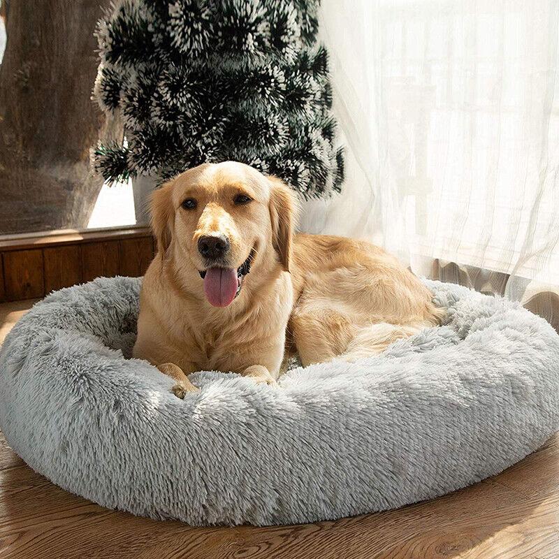 Coussin moelleux lavable et confortable pour Chien chat Chinot lit confortable 3